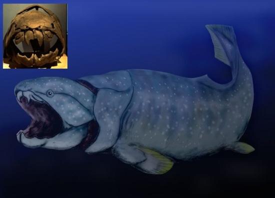 Самые крупные хищники за всю историю земли